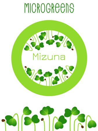 Microgreens Mizuna. Seed packaging design, round element in the center. Sprouting seeds of a plant Vettoriali