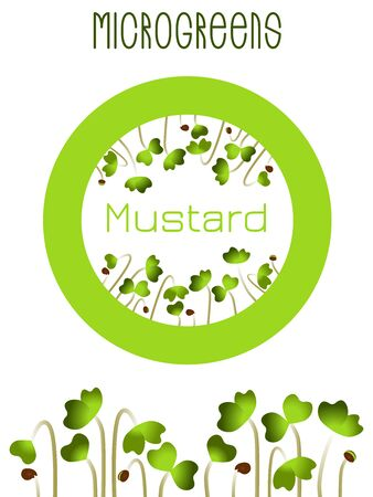 Microgreens Mustard. Seed packaging design, round element in the center. Sprouting seeds of a plant