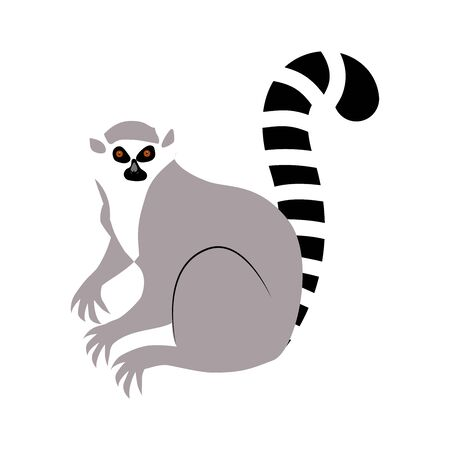 Lemur. Vector illustration of an animal. Flat style. Isolated on white