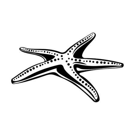 Starfish. Isolated on white. Underwater world. Vector Illusztráció