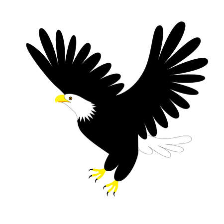 Eagle icon template. Flying eagle isolated on white.