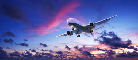 Jet aircraft cruising in a sunset sky. Panoramic shot. Stock Photo - 11265508