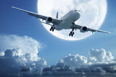 Morning flight Stock Photo - 11537594