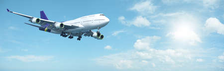 jumbo: Jumbo jet aircraft is maneuvering in a sunny sky. Panoramic composition. Stock Photo