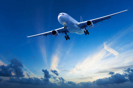 Evening flight photo