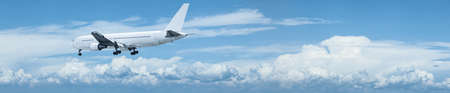 Jet aircraft in flight  Panoramic composition  photo