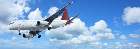 aircraft landing: Jet plane in a blue sky. Panoramic composition.