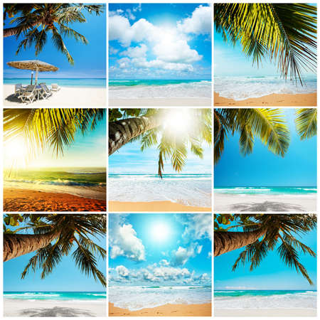 Tropical beach collection photo