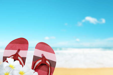 flipflops: Perfect tropical beach in sunny day
