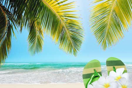 sandal tree: My vacation