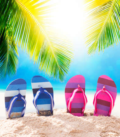 sandal tree: On the beach concept Stock Photo