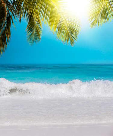 composition vertical: Tropical Paradise. Composizione verticale. Archivio Fotografico