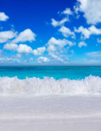 composition vertical: Spiaggia tropicale. Composizione verticale. Archivio Fotografico