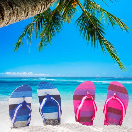 sandal tree: Sandals on the tropical beach