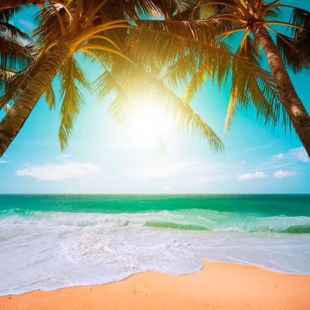 Perfect tropical beach scene Reklamní fotografie - 27755090