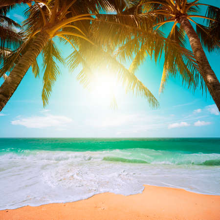 Perfect tropical beach scene