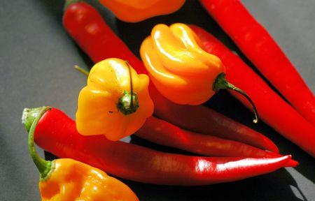 diferentes tipos de chiles  Foto de archivo - 522688