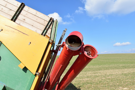 Screw conveyor in agriculture. Farm.