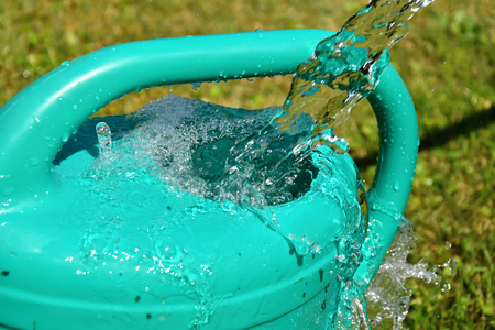 The water hose flows from the garden hose into the watering can. Wasteful wasting water. Stock Photo