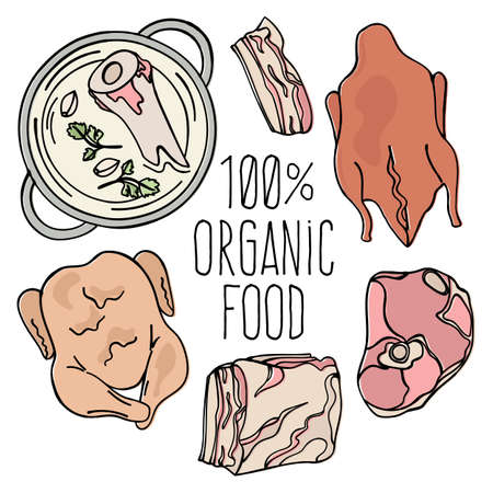 ORGANIC MEAT Carnivore Diet Mind Healthy Natural Food Proper Nutrition Eating Vector Illustration Set