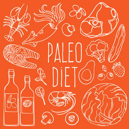 PALEO INGREDIENTS Healthy Food Low Carb Diet Proper Nutrition Vector Illustration Set for Print Fabric and Decoration
