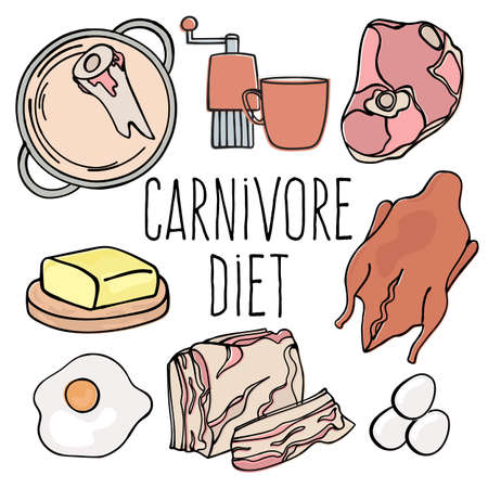 CARNIVORE MENU Organic Healthy Food Diet Proper Nutrition Mind Eating Vector Illustration Set Illusztráció