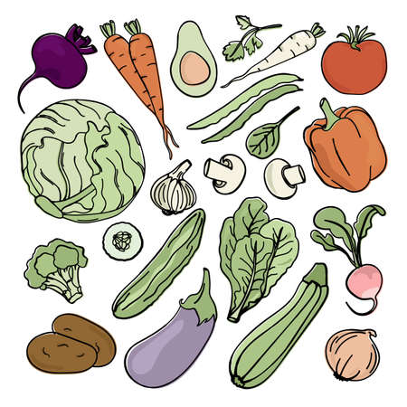 VEGETARIAN SET Paleo Natural Diet Food Proper Nutrition Vector Illustration for Print Fabric and Decoration Stock Illustratie