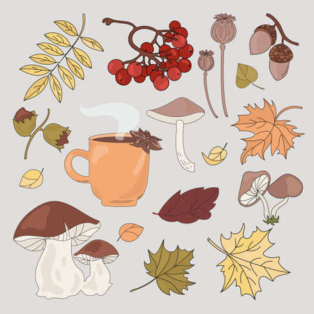 AUTUMN FOREST Fall Season Nature Vector Illustration Set for Print Fabric and Design Ilustração