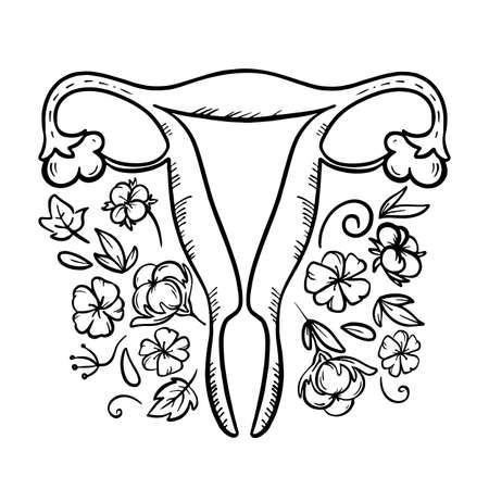 ORGANIC FOR FEMININE HEALTH Reproductive System Medicine Education Human Hand Draw Vector Illustration Set Illustration