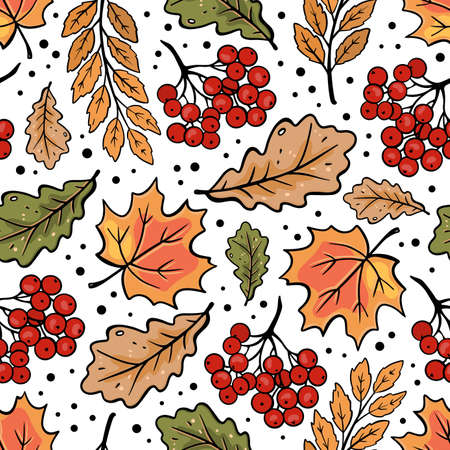 AUTUMN ROWAN MAPLE OAK LEAVES Fall Nature Season Forest Seamless Pattern Vector Illustration For Print Illusztráció