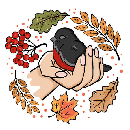 BULLFINCH IN THE PALM Autumn Bird Fall Nature Season Forest Clip Art Vector Illustration For Print