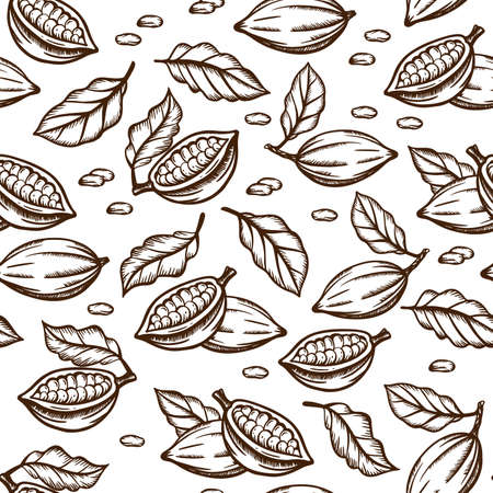 COCOA SKETCH Seeds And Leaves Design In Brown Color On White Background In Vintage Style Monochrome Hand Drawn Seamless Pattern Vector Illustration For Print 向量圖像