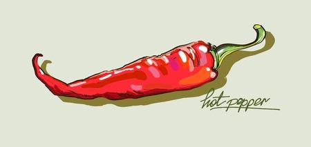 dessin vectoriel main poivrons rouges chauds Vecteurs