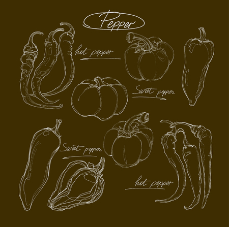 peppers: vector hand drawing set  peppers Illustration