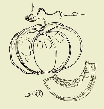 juicy: vector hand drawing juicy melons Illustration