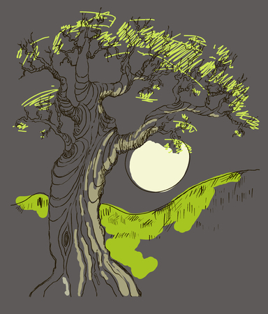 thick forest: Hand drawing of the old oak tree in the moon in the night . Vector. Vintage.