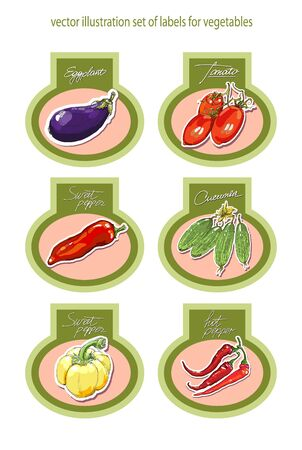 organic peppers sign: Set of vector labels with vegetables. Beautiful illustration.