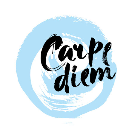 'catch the moment': Carpe diem. In latin means Catch the moment. Hand-lettering using a brush inspirational quote isolated on white background. Vector calligraphy art.
