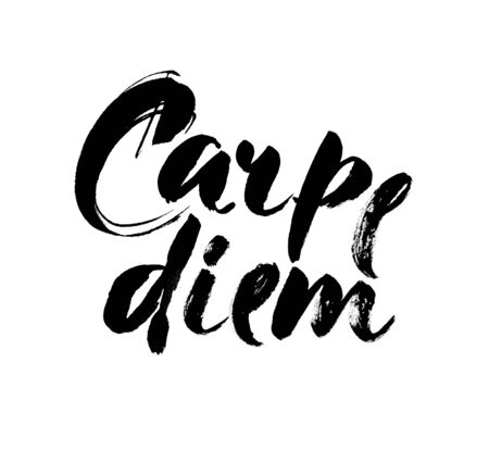 'catch the moment': Carpe diem. In latin means Catch the moment.