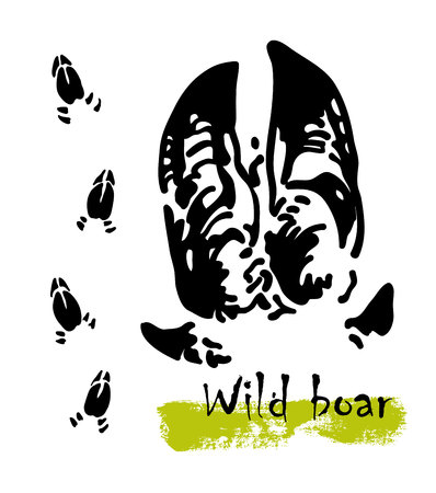 Silhouettes of traces of wild animals. Traces of a wild boar. Vector illustration
