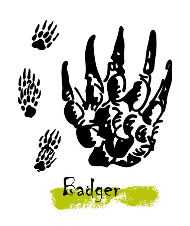A vector illustration of black silhouette footprints of variety animals. Illustration