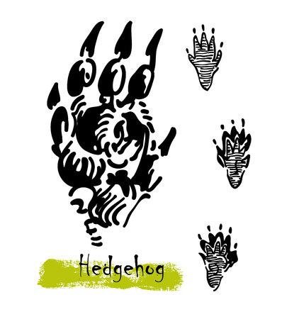 Wildlife animals. Traces of a hedgehog. Footprints of variety of animals, illustration of black silhouette footprints. Vector illustration