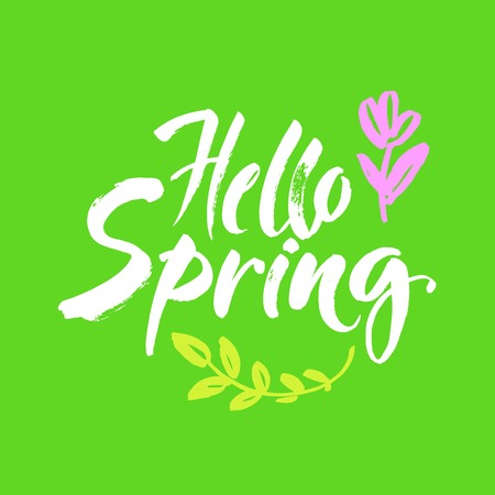 Phrase Hello spring Brush lettering isolated on green background. Handwritten vector Illustration. Illusztráció