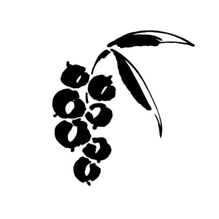 Currant vector sketch icon isolated on background. Hand drawn ink brush illustration. Icon for infographic, website or app