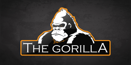 Gorilla on a dark background. Vector gorilla with room for text.