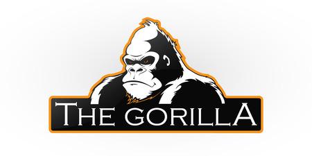 Gorilla on a white pattern. Illustration