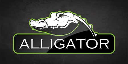 Alligator on a black background. Vector illustration