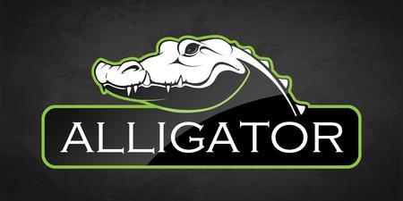 Alligator on a black background. Vector illustration