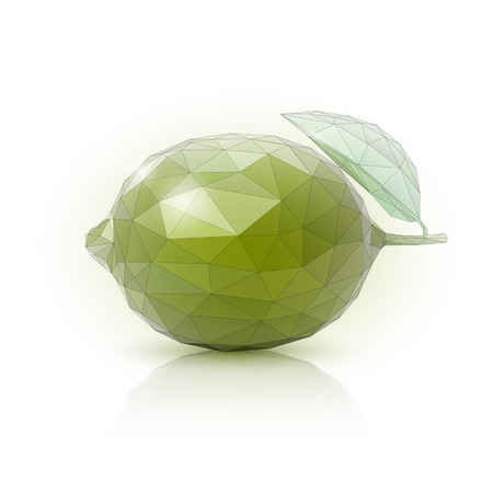 Image of an lime in the style of low poly. Vector illustration