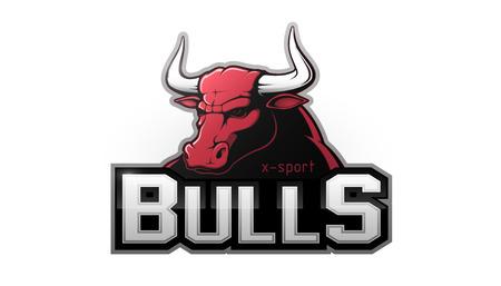 Modern professional bull logo for a sport team. Vector logo on a white background.